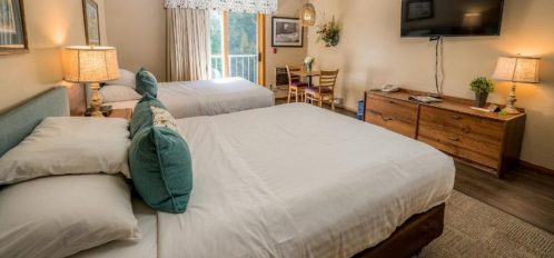 Traditional Pet Friendly Hotel Room with Two Queen Beds