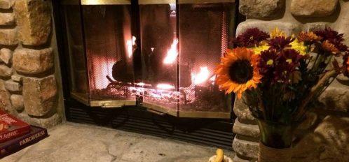 fireplace-and-sunflowers.jpg.1024x0